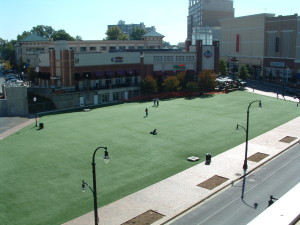 Synthetic Turf SoftLawn Conserves Water