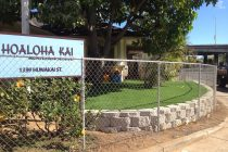 Hoaloha PlayLawn After