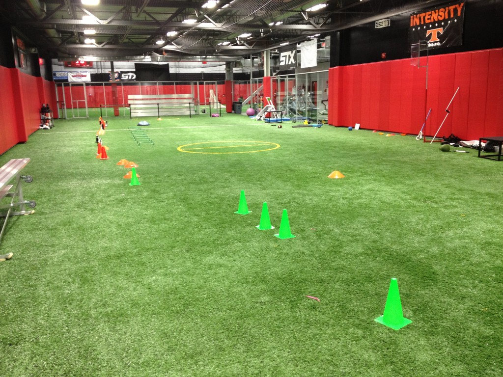 Indoor-Facility | Sports Turf | STI