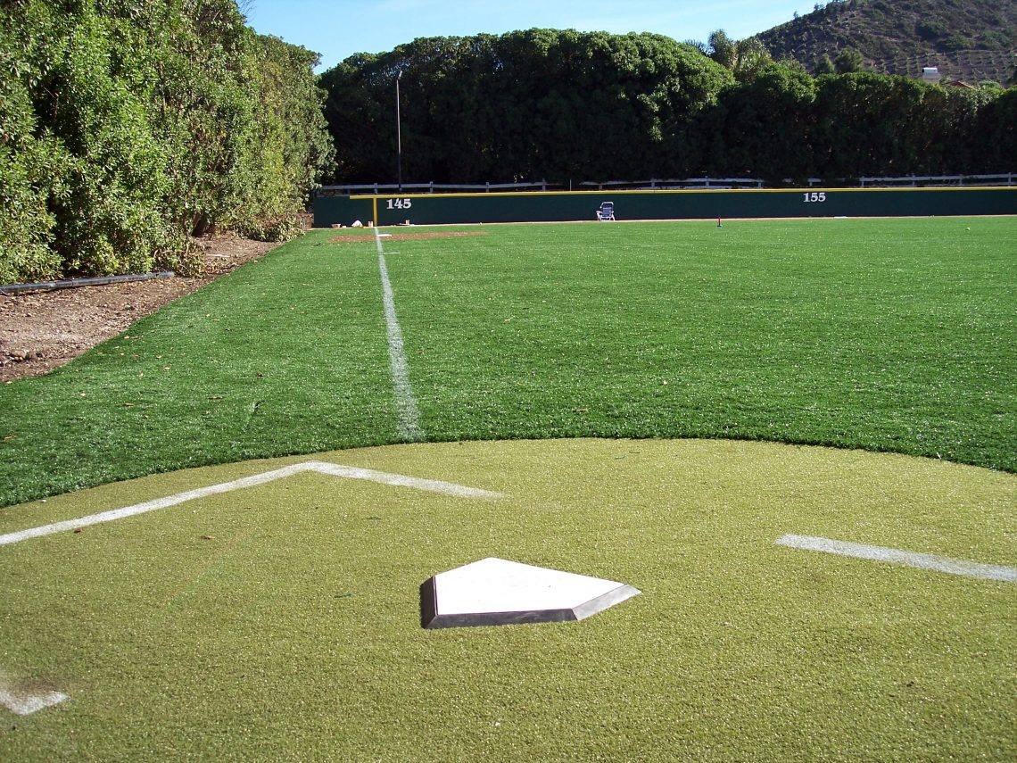 Baseball Batting Cage Turf Photo Gallery Synthetic