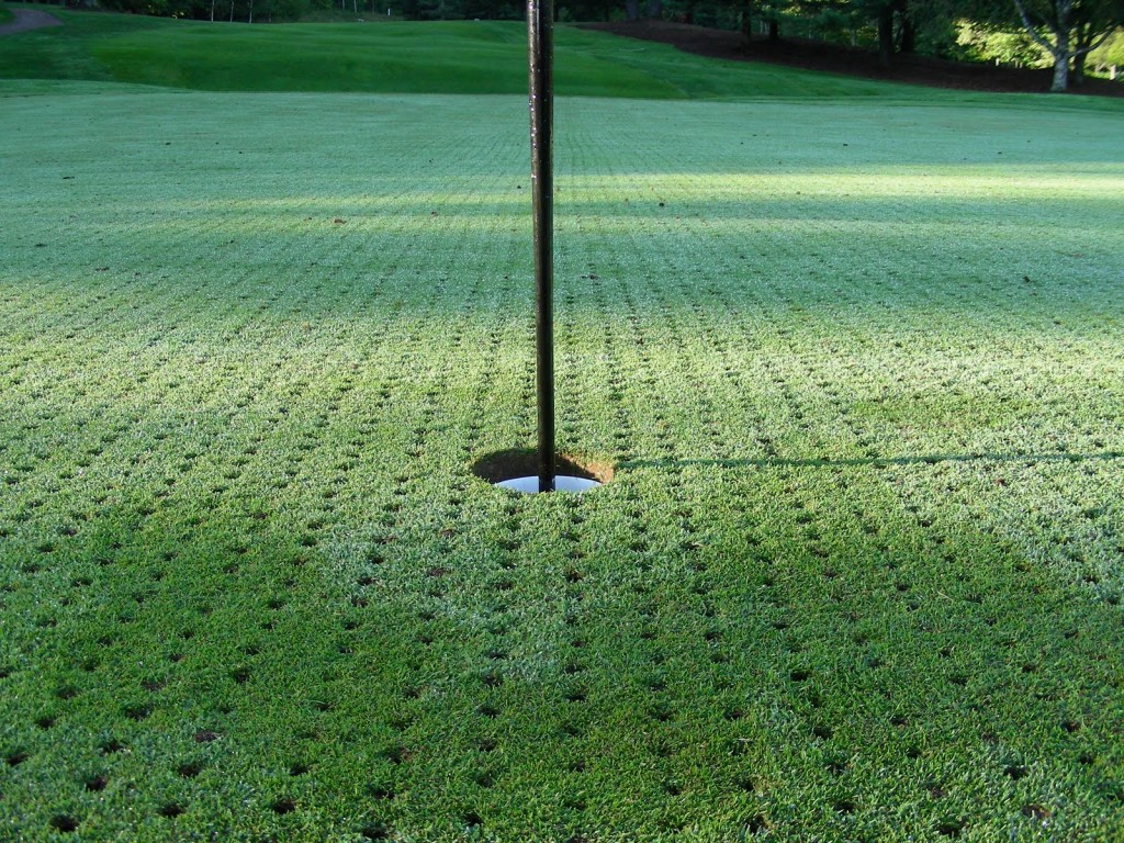 Aerated Putting Green