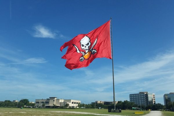 Tampa Bay Buccaneers | sports turf | STI