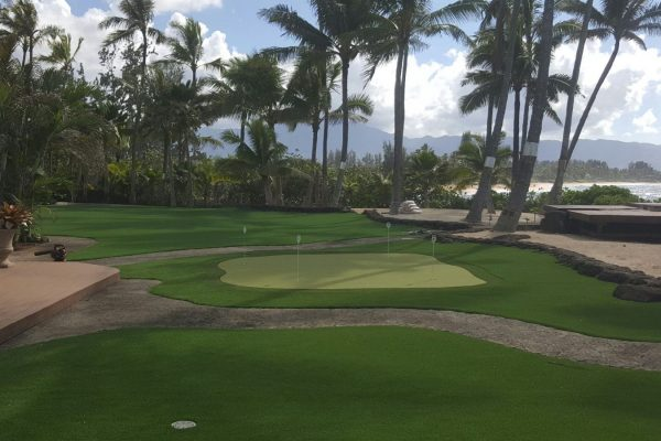 North Shore | Fresh Cut Pro Turf Installation, Residential Putting Green