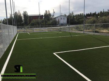 Sports Field Artificial Grass Application