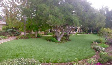 David- Montecito 2