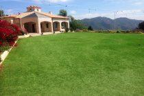 Malibu Lawn