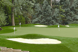 About Golf Greens Texas